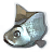 Fisch Icon.png